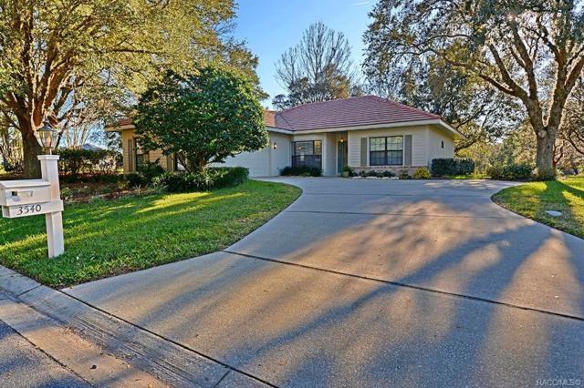 3540 W Treyburn Path, Lecanto, FL 34461 (MLS #780190) :: Plantation Realty Inc.
