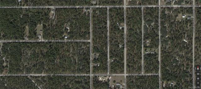 00 SW Pinto Place, Dunnellon, FL 34431 (MLS #780193) :: Plantation Realty Inc.