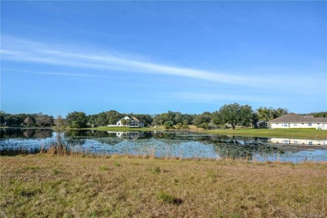 9740 E Baymeadows Drive, Inverness, FL 34450 (MLS #780279) :: Plantation Realty Inc.