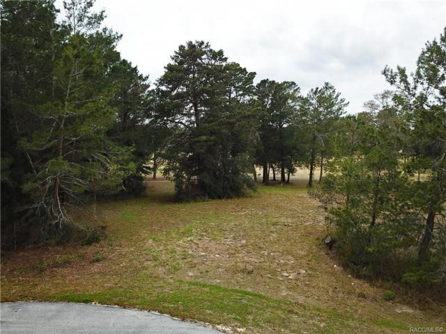 14 Woodlee Court S, Homosassa, FL 34446 (MLS #780306) :: Plantation Realty Inc.