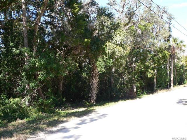 1114 S Blalock Way, Crystal River, FL 34429 (MLS #780347) :: Plantation Realty Inc.