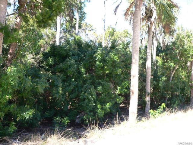 1092 S Blalock Way, Crystal River, FL 34429 (MLS #780348) :: Plantation Realty Inc.