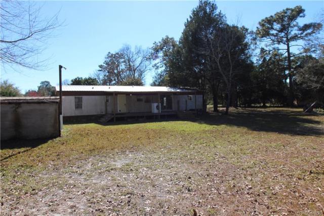 6393 W Folger Court, Homosassa, FL 34446 (MLS #780349) :: Plantation Realty Inc.