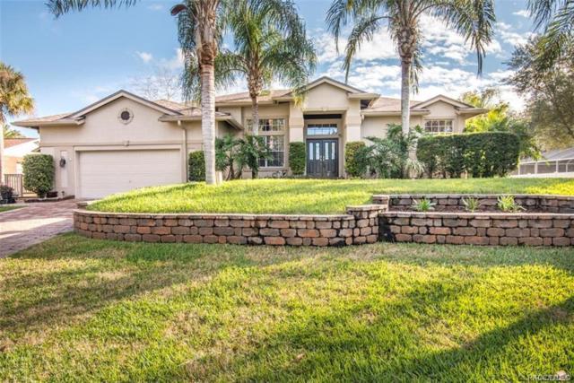 2142 N Watersedge Drive, Crystal River, FL 34429 (MLS #780352) :: Plantation Realty Inc.