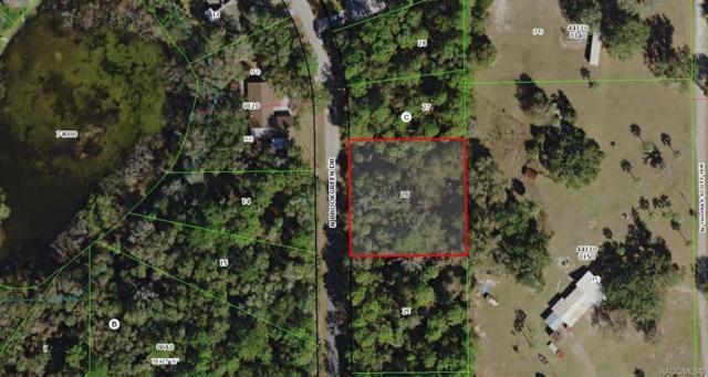 5823 N Brookgreen Drive, Crystal River, FL 34428 (MLS #780382) :: Plantation Realty Inc.
