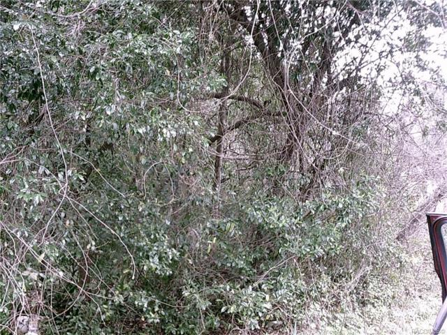 6382 W Tangerine Lane, Crystal River, FL 34429 (MLS #780396) :: Plantation Realty Inc.