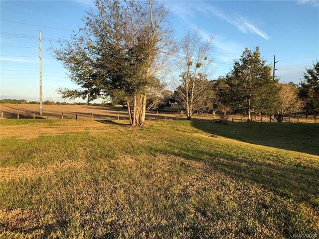 337 N Big Oaks Point, Lecanto, FL 34461 (MLS #780420) :: Plantation Realty Inc.