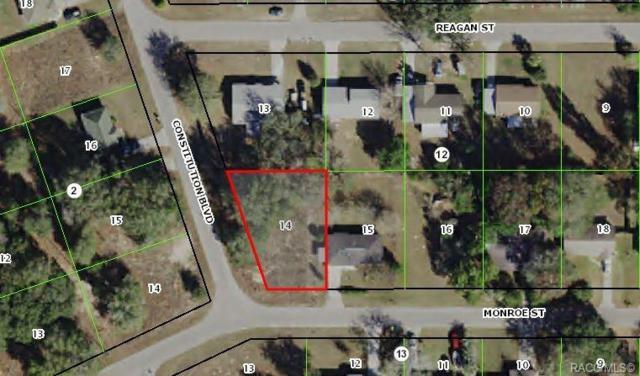 2912 Monroe Street W, Inverness, FL 34453 (MLS #780442) :: Plantation Realty Inc.