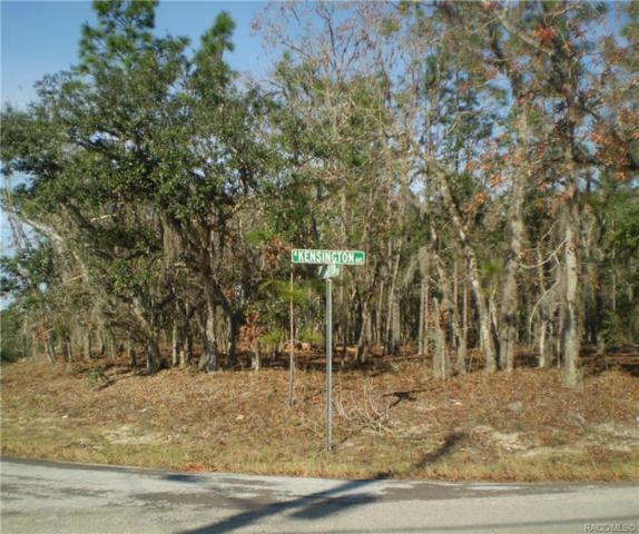 620 N Brighton Road, Lecanto, FL 34461 (MLS #780450) :: Plantation Realty Inc.