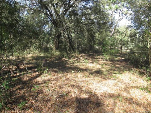 4619 E Donora Lane, Floral City, FL 34436 (MLS #780463) :: Plantation Realty Inc.