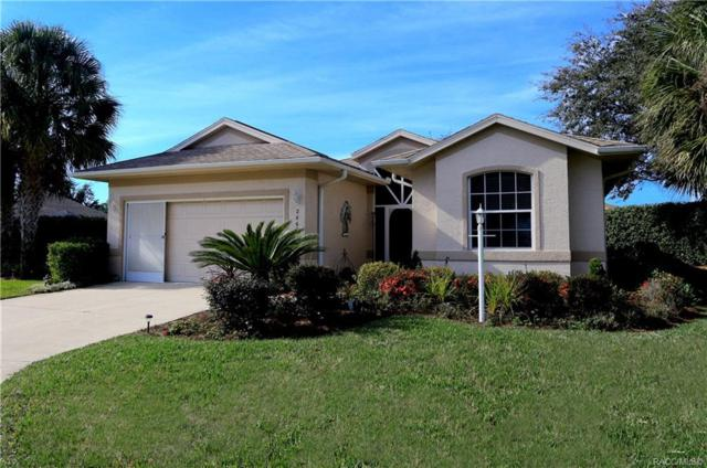 2860 N Kayla Point, Lecanto, FL 34461 (MLS #780482) :: Plantation Realty Inc.