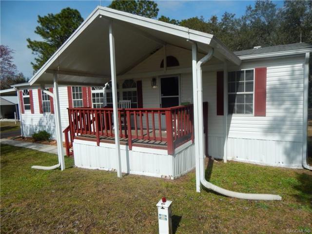 7157 W Grant Street, Homosassa, FL 34448 (MLS #780486) :: Plantation Realty Inc.