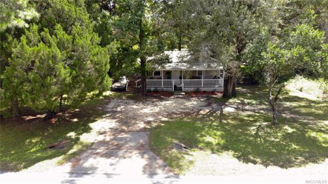 19592 SW Marine Boulevard, Dunnellon, FL 34431 (MLS #780491) :: Plantation Realty Inc.