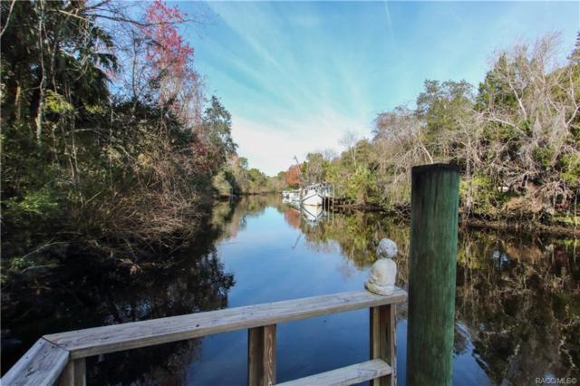 14935 W River Road, Inglis, FL 34449 (MLS #780503) :: Plantation Realty Inc.