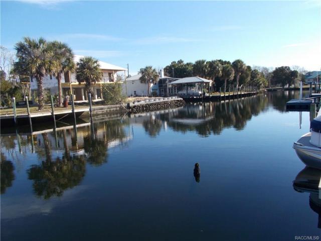 2061 NW 18th Street, Crystal River, FL 34428 (MLS #780535) :: Pristine Properties