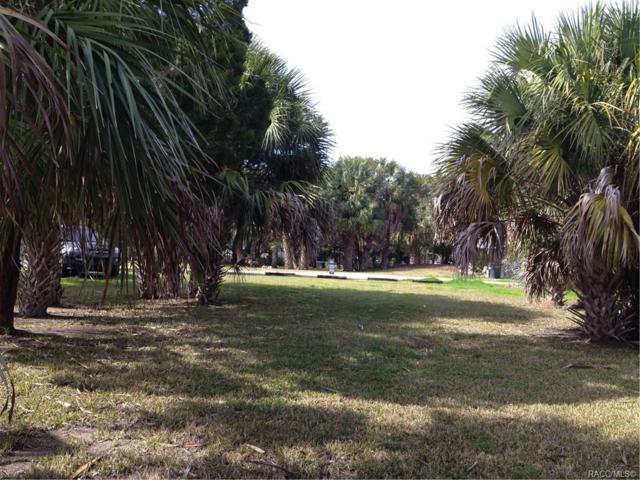 11946 W Bald Eagle, Crystal River, FL 34429 (MLS #780545) :: Plantation Realty Inc.