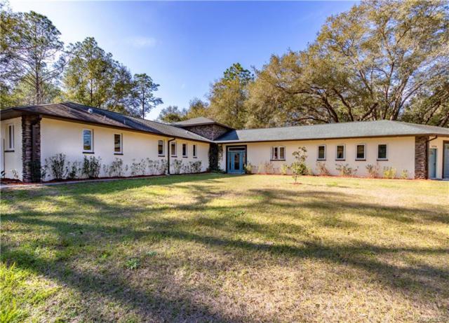 11234 SW 131st Terrace, Dunnellon, FL 34432 (MLS #780558) :: Plantation Realty Inc.