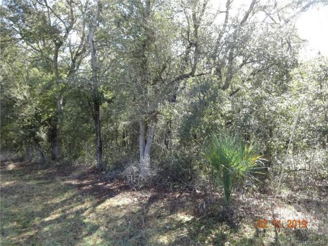 3149 W Grapevine Court, Dunnellon, FL 34433 (MLS #780608) :: Plantation Realty Inc.