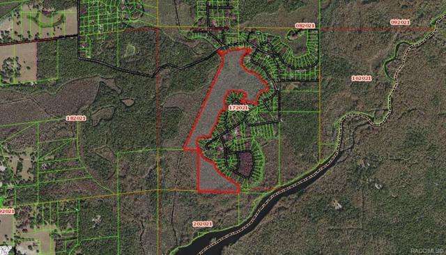 7700 S Four Oaks Drive, Floral City, FL 34436 (MLS #780637) :: Plantation Realty Inc.