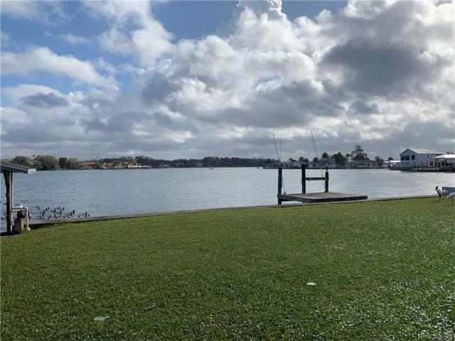 2301 N Watersedge Drive, Crystal River, FL 34429 (MLS #780653) :: Plantation Realty Inc.