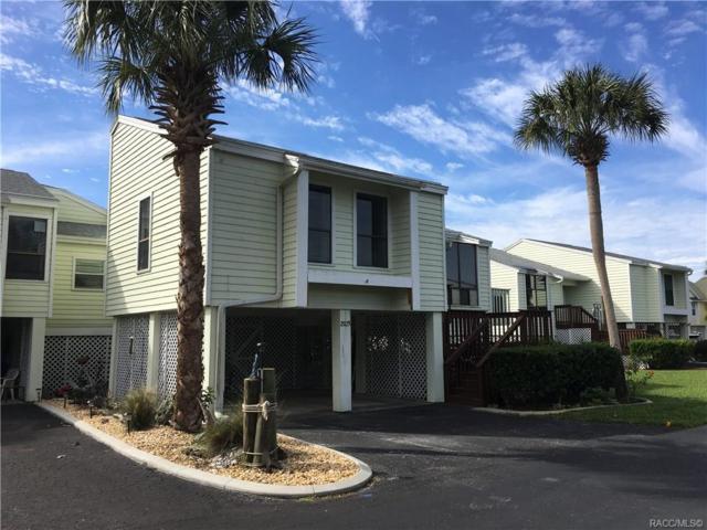 2925 N Rivers Edge Boulevard, Crystal River, FL 34429 (MLS #780669) :: Pristine Properties