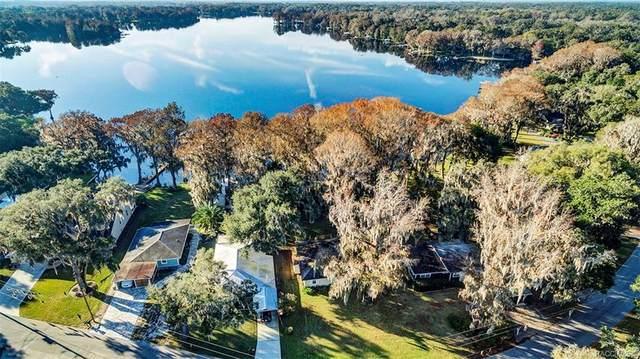 9090 E Devilsneck Road, Floral City, FL 34436 (MLS #780694) :: Plantation Realty Inc.