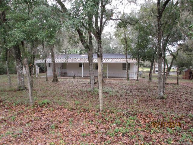 10955 E Flounder Drive, Floral City, FL 34436 (MLS #780707) :: Pristine Properties