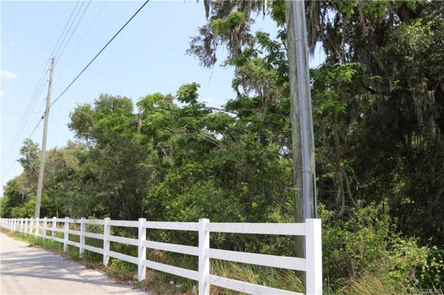 331 W Office Park Road, Hernando, FL 34442 (MLS #780717) :: Pristine Properties
