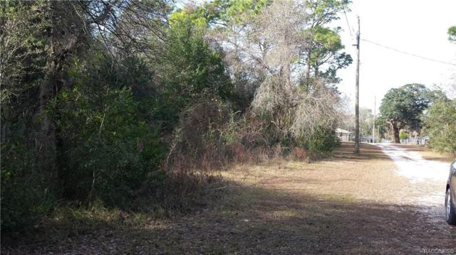 3145 S Calais Terrace, Homosassa, FL 34448 (MLS #780726) :: Plantation Realty Inc.