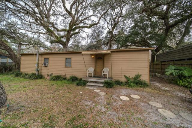4101 E Riverside Drive, Dunnellon, FL 34434 (MLS #780746) :: Plantation Realty Inc.