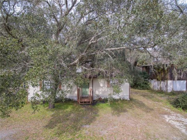 4141 E Riverside Drive, Dunnellon, FL 34434 (MLS #780748) :: Plantation Realty Inc.