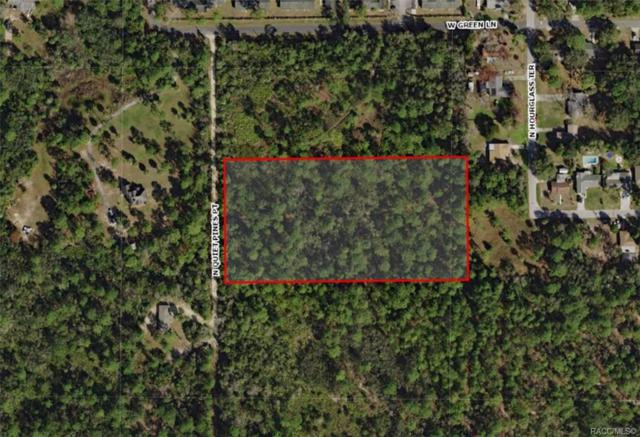 285 N Quiet Pines Point, Crystal River, FL 34429 (MLS #780755) :: Plantation Realty Inc.