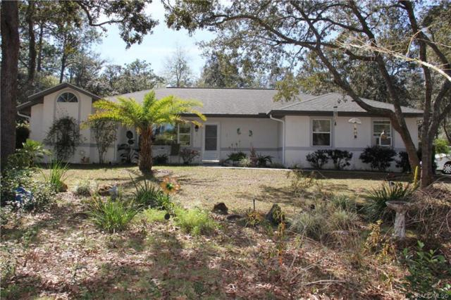 2800 E Fawn Court, Inverness, FL 34452 (MLS #780759) :: Plantation Realty Inc.