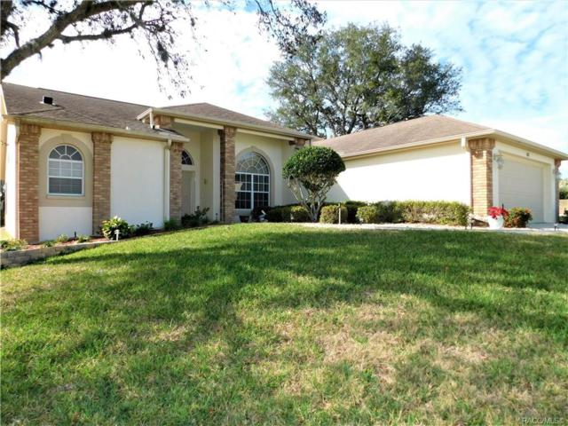 62 N Youngtree Point, Lecanto, FL 34461 (MLS #780773) :: Plantation Realty Inc.