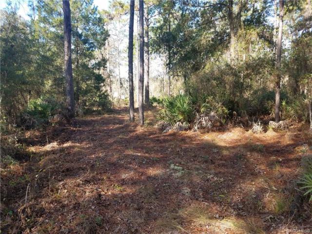 4881 N Arid Point, Crystal River, FL 34428 (MLS #780782) :: Plantation Realty Inc.