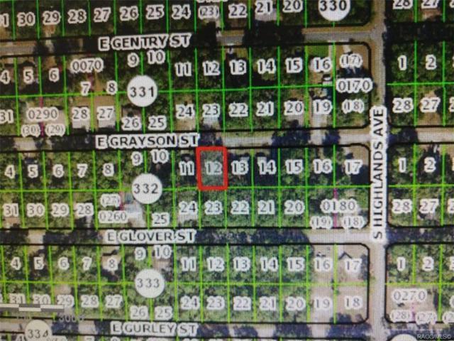 6476 E Grayson Street, Inverness, FL 34452 (MLS #780790) :: Plantation Realty Inc.