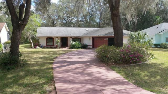 3051 N Chandler Drive, Hernando, FL 34442 (MLS #780791) :: Pristine Properties