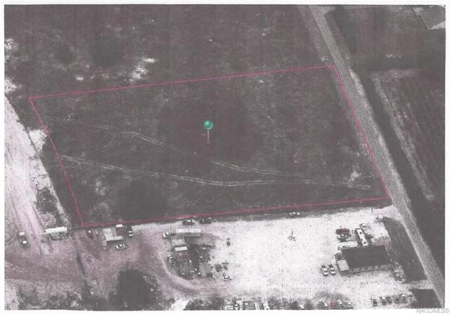 6654 S Georgian Road, Homosassa, FL 34446 (MLS #780802) :: Plantation Realty Inc.