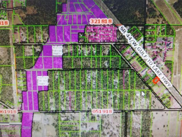4164 W Gulf To Lake Highway, Lecanto, FL 34461 (MLS #780824) :: Plantation Realty Inc.