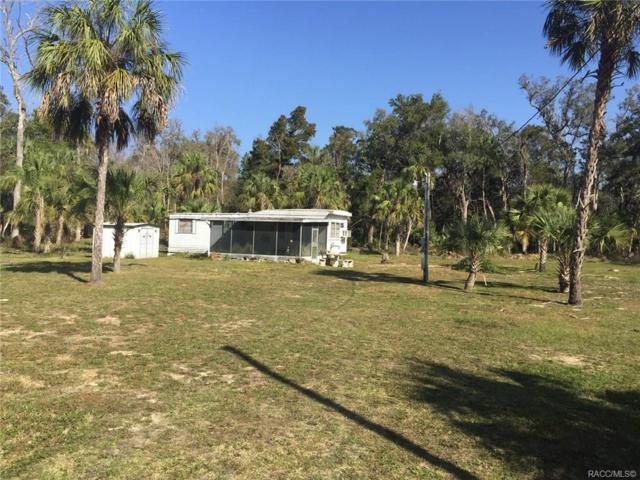 11045 W Rockhaven Lane, Homosassa, FL 34448 (MLS #780829) :: Plantation Realty Inc.