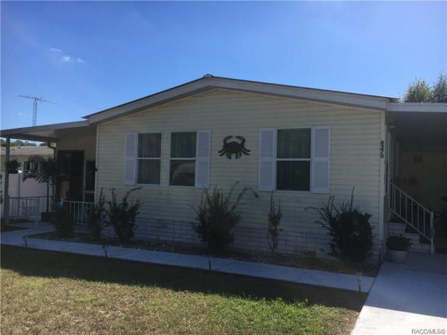 8270 E Molly Lane, Floral City, FL 34436 (MLS #780839) :: Plantation Realty Inc.