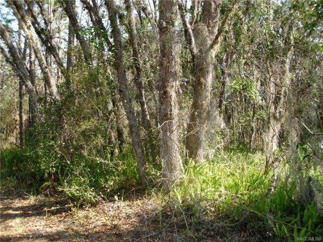 689 N. Seton Avenue, Lecanto, FL 34461 (MLS #780846) :: Plantation Realty Inc.