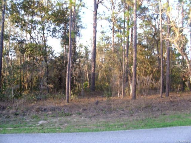1267 E. Rockefeller Lane, Hernando, FL 34442 (MLS #780849) :: Plantation Realty Inc.