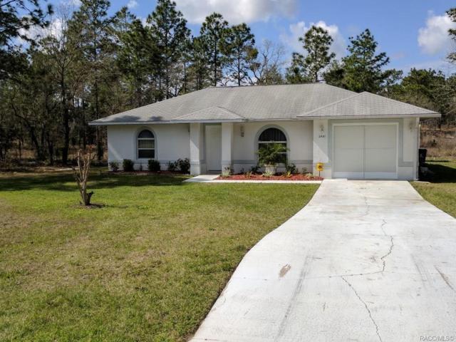 2481 W Bravura Drive, Citrus Springs, FL 34433 (MLS #780863) :: Pristine Properties