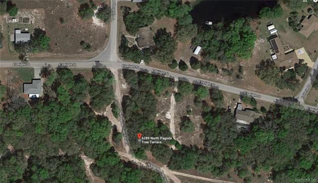 6289 and 6301 N Pagoda Tree Terrace, Hernando, FL 34442 (MLS #780887) :: Pristine Properties