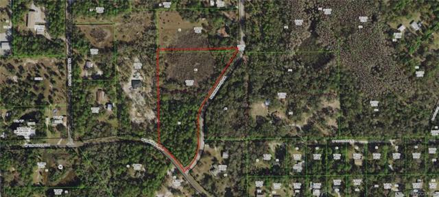 5024 N Tumblewood Drive, Crystal River, FL 34428 (MLS #780908) :: Plantation Realty Inc.