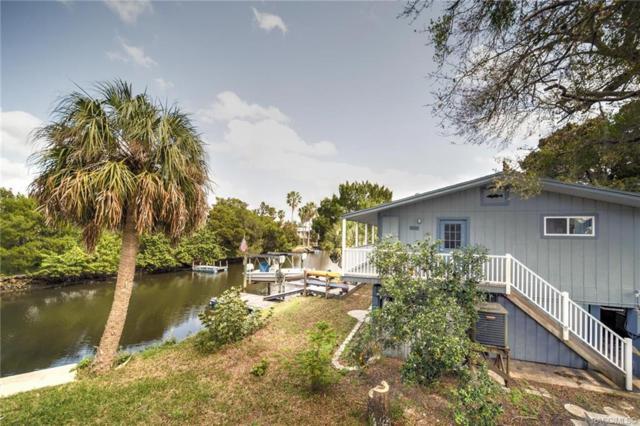12091 W Bald Eagle Court, Crystal River, FL 34429 (MLS #780911) :: Plantation Realty Inc.