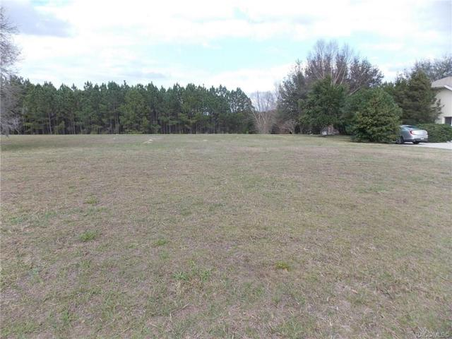 1505 E Seattle Slew Circle, Inverness, FL 34453 (MLS #780920) :: Plantation Realty Inc.