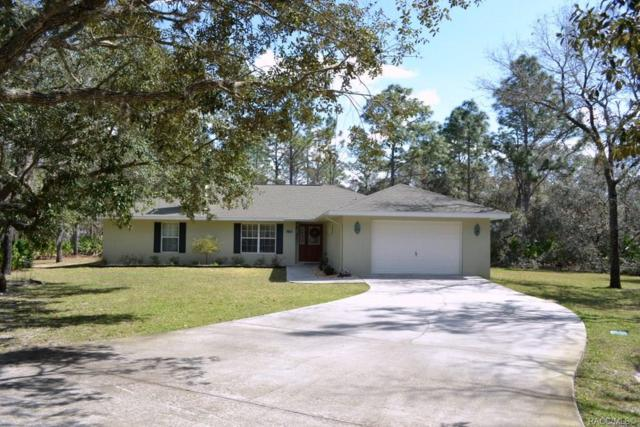 2597 S Coleman Avenue, Homosassa, FL 34448 (MLS #780930) :: Plantation Realty Inc.