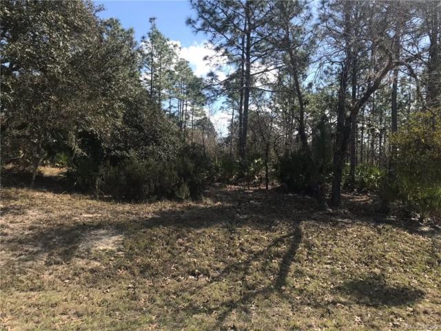 3812 N Grayhawk Loop, Lecanto, FL 34461 (MLS #780960) :: Plantation Realty Inc.